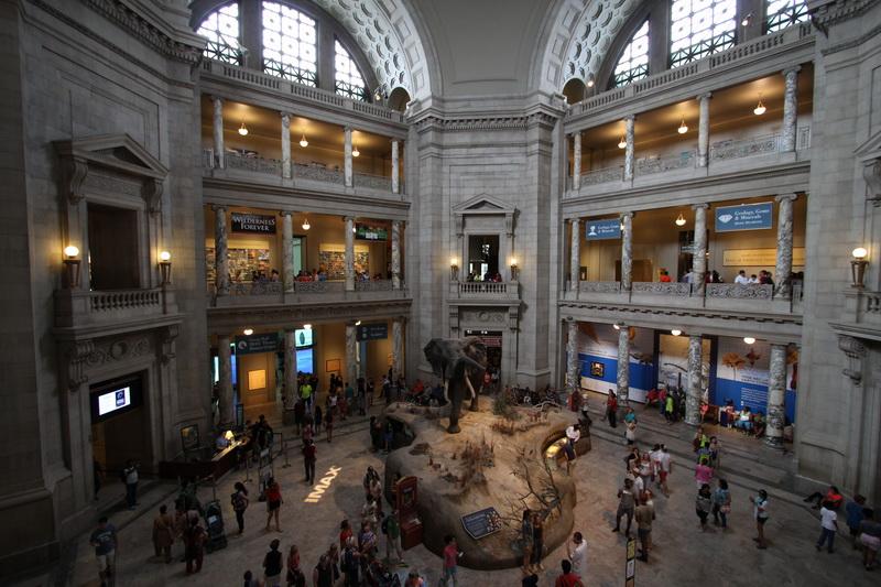 Eingangshalle Naturkundemuseum an der Mall
