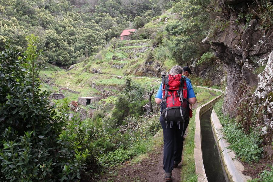 An der Levada do Canical