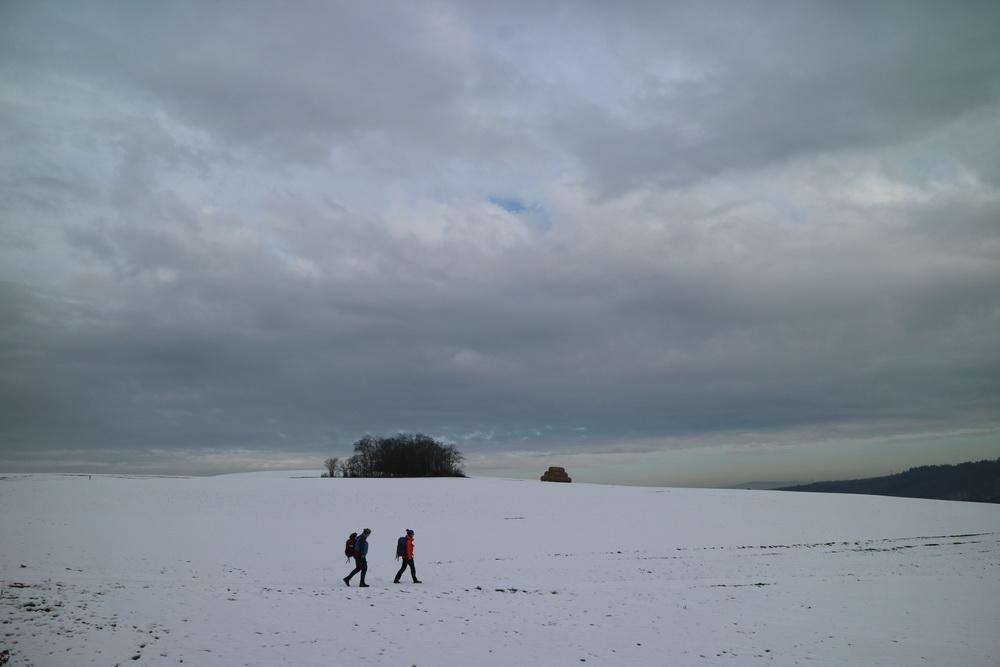 Winter oberhalb der Mosel