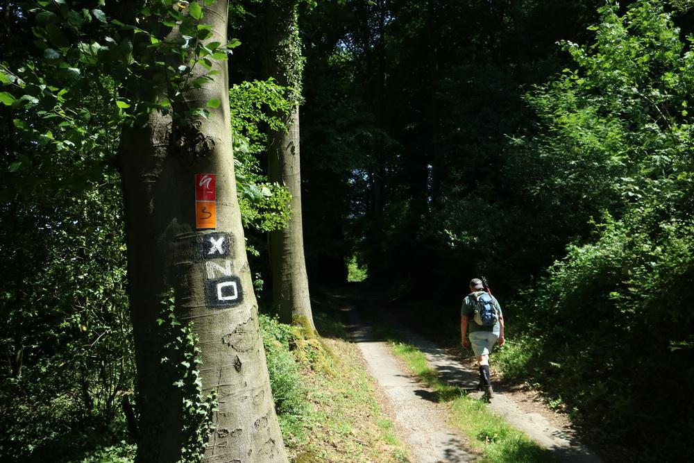 Waldpassage Velbert- Langenhorst