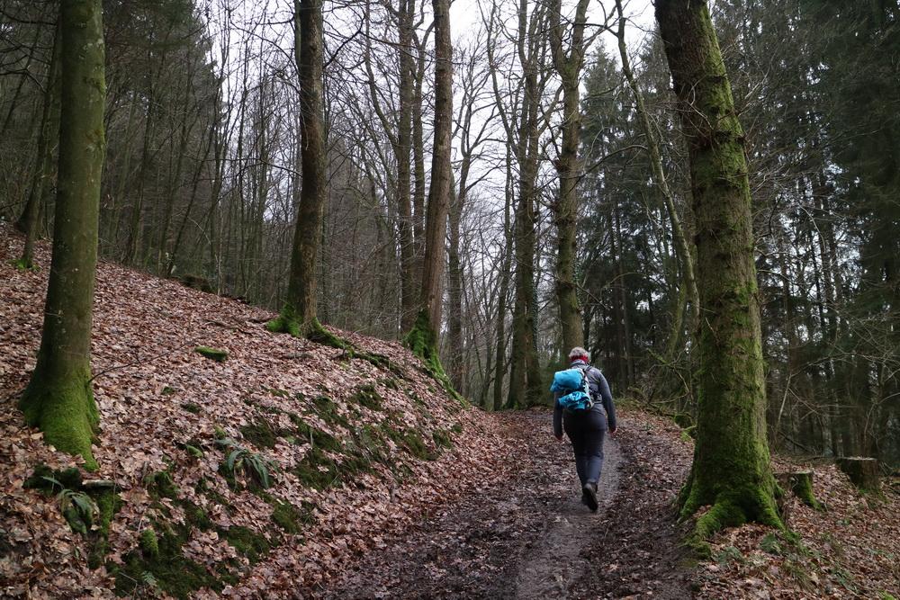 Im Naturpark Bergisches Land