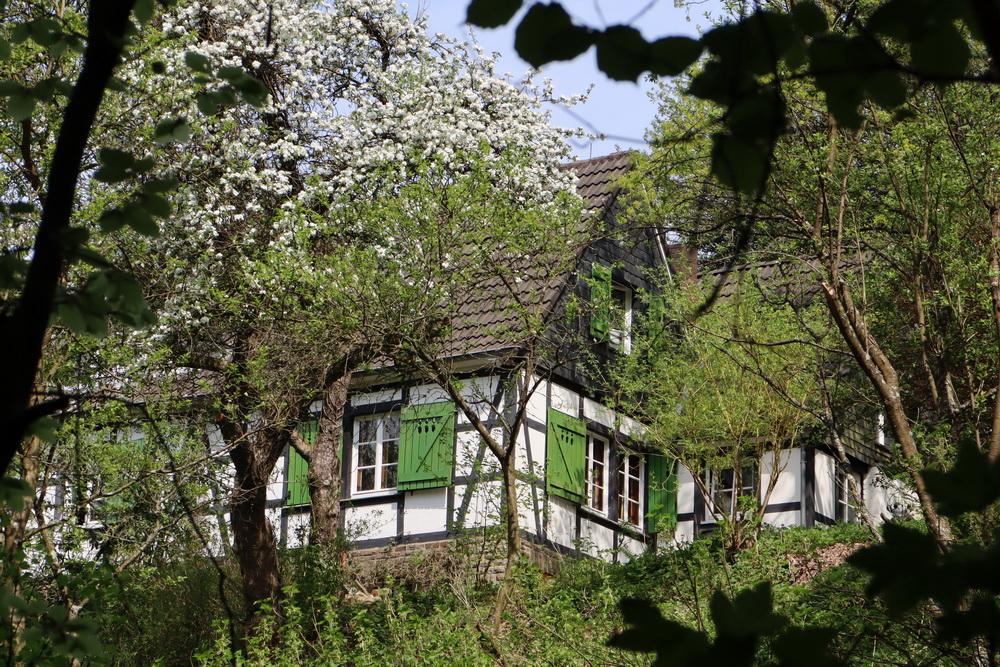 Bergisches Haus