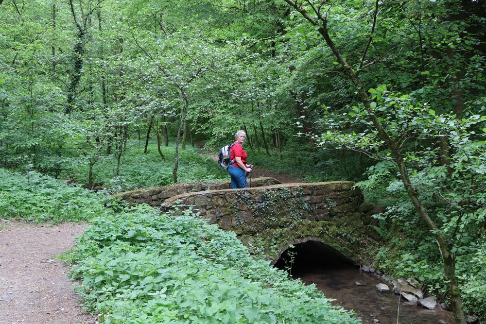 Bergischer Weg Richtung Bensberg