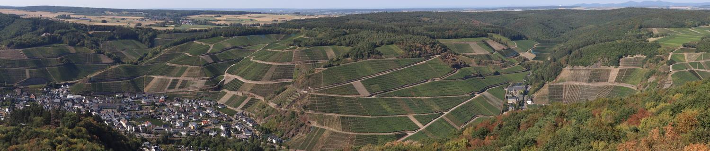 Blick nach Norden vom Krausbergturm
