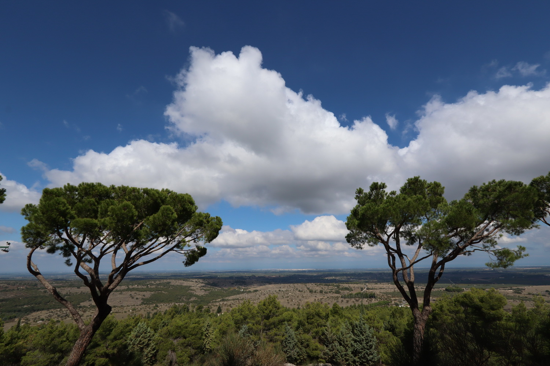 Alta Murgia- Blick Richtung Andria