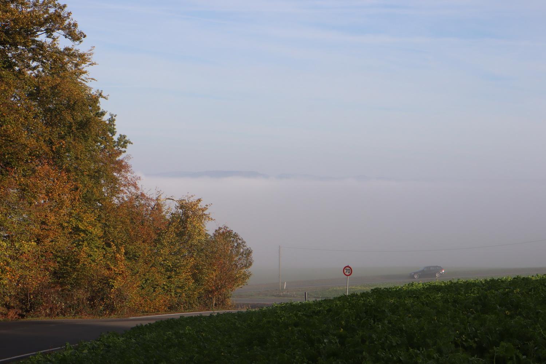 Herbstmorgen mit Nebel und Raureif