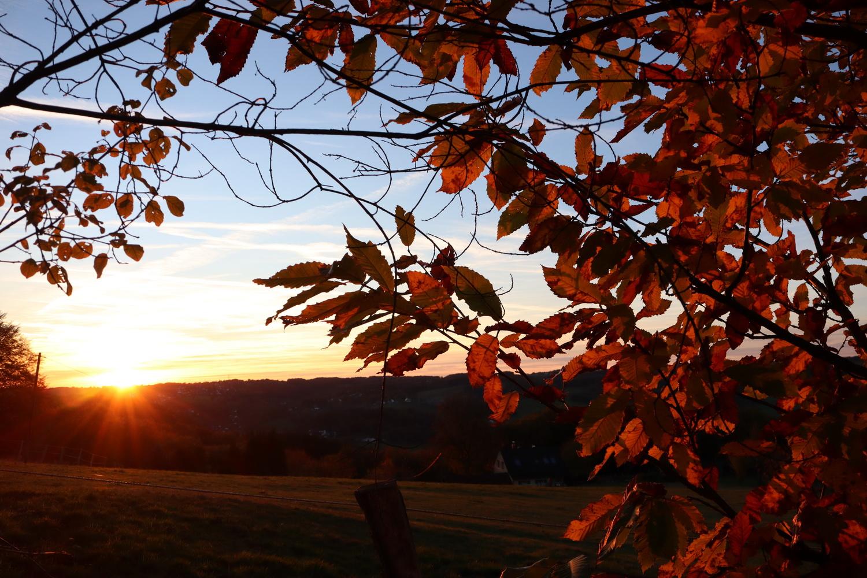 Sunset vor Eulenthal