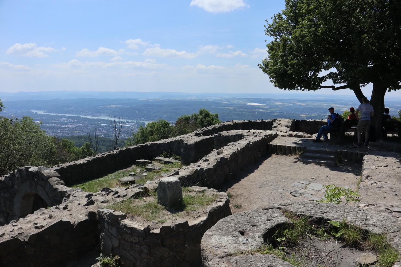 Löwenburg- Blick nach Süd-West