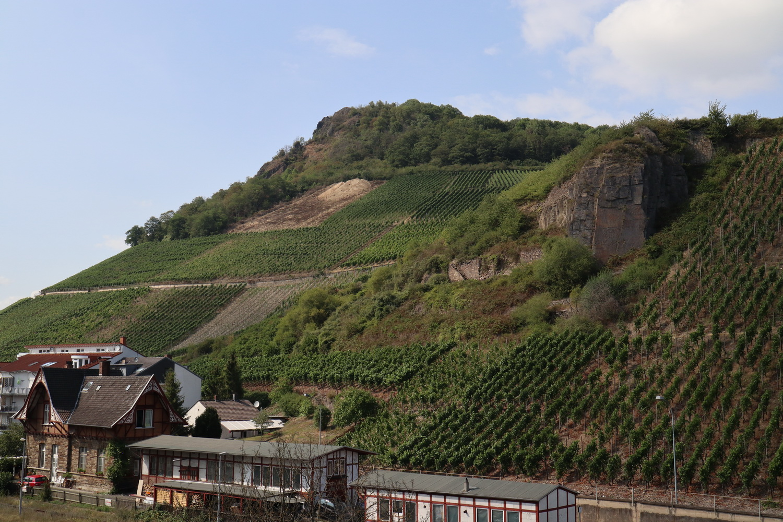 Weinberge an der Landskrone mit Bahnhof Heimersheim