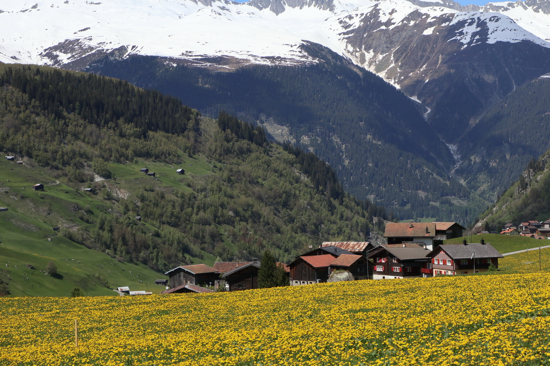 Der Alpen- Sommer rückt näher