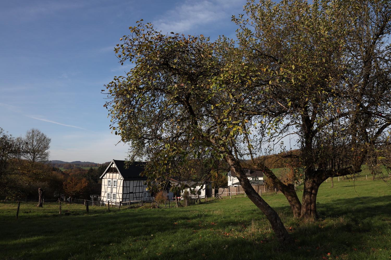 Bergisches Herbstidyll