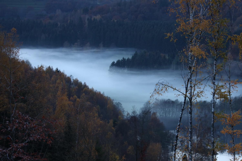 Nebel im Rurtal
