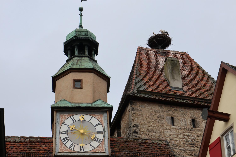 Storchenpaar auf dem Markusturm- Rothenburg ob der Tauber