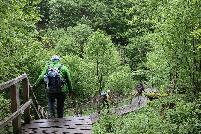 Abstieg von Burg Vogelsang