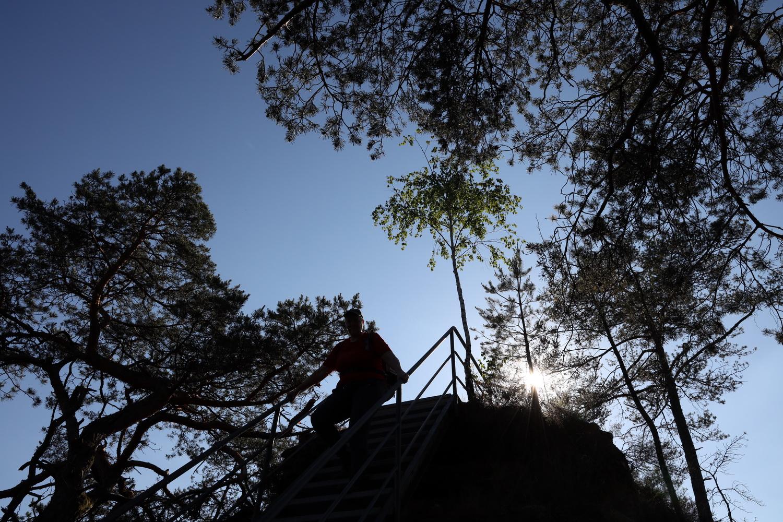 Abstieg vom Wachtfelsen