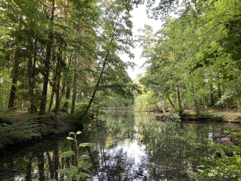 Forstweiher Rheinbach