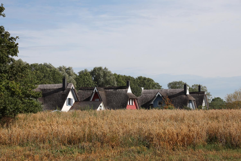 Reet- Häuser am Kap Arkona