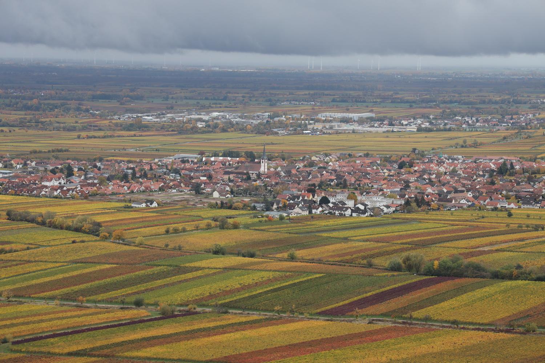 SO-Blick auf Kirrweiler vom Hambacher Schloss