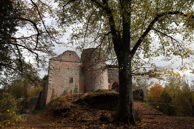 Ruine Neu- Scharfeneck