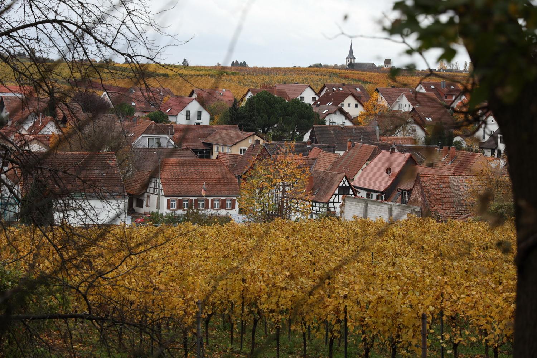 Herbstidyll in Wollmesheim