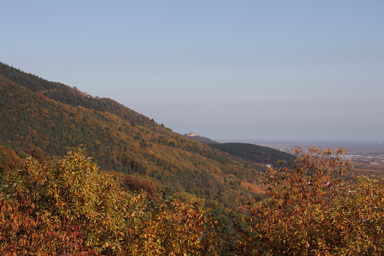 NO- Blick auf Rietburg und Hambacher Schloss