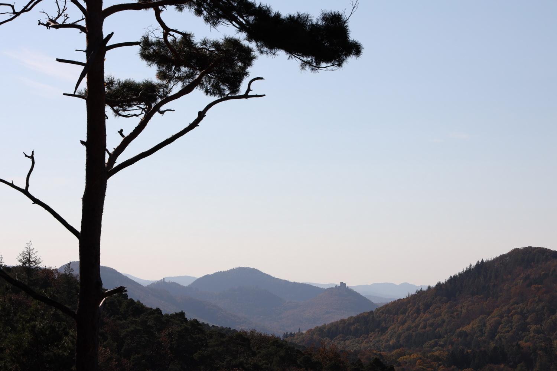 Blick ins Trifels- Land