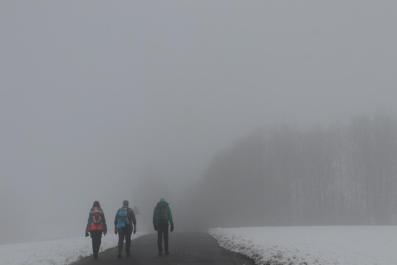 Wintertag im Nebel