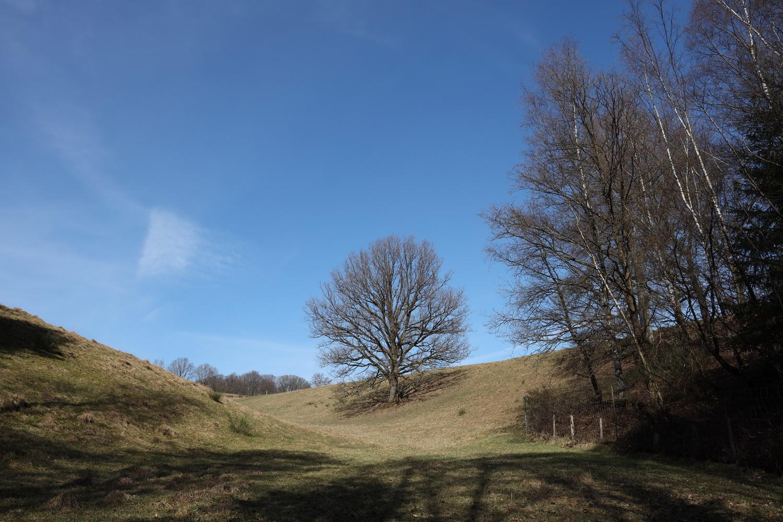 Frühling im Bergischen