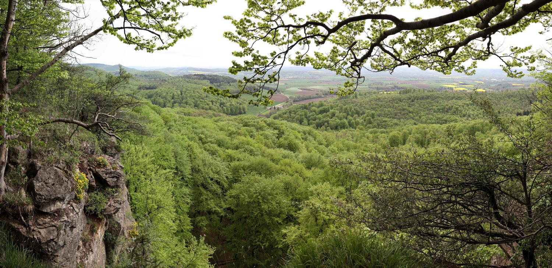 Felsabbrüche am Hohenstein