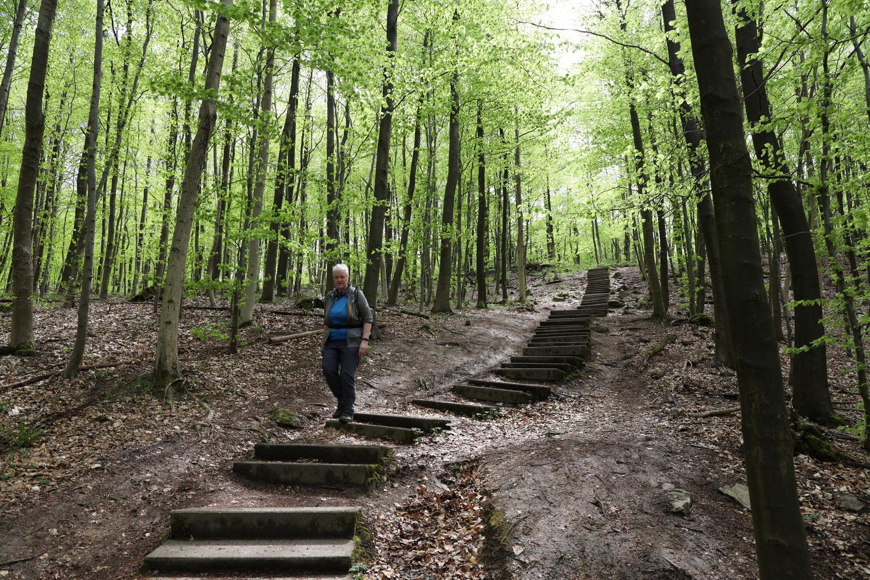 Treppen- Abstieg am Hirschsprung