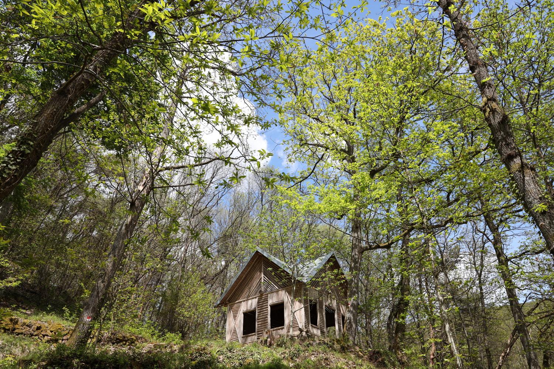 Aufstieg an der Tina-Will-Blick Hütte