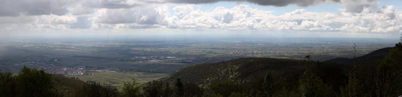 Kalmit 578m- Blick in die Ebene