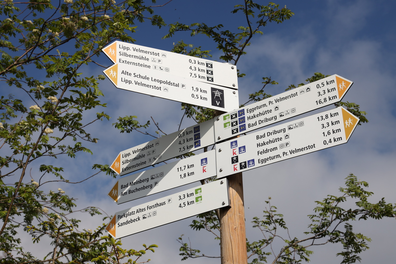 Wegenetz im Teutoburger Wald