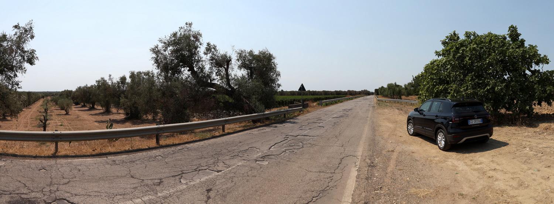 Landstraße im Salento